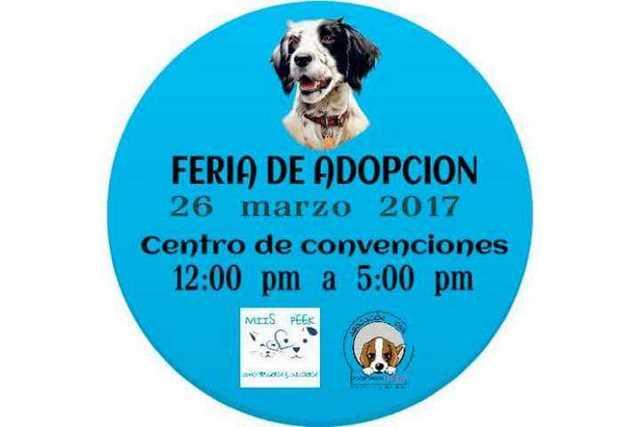 Feria-de-adopcion
