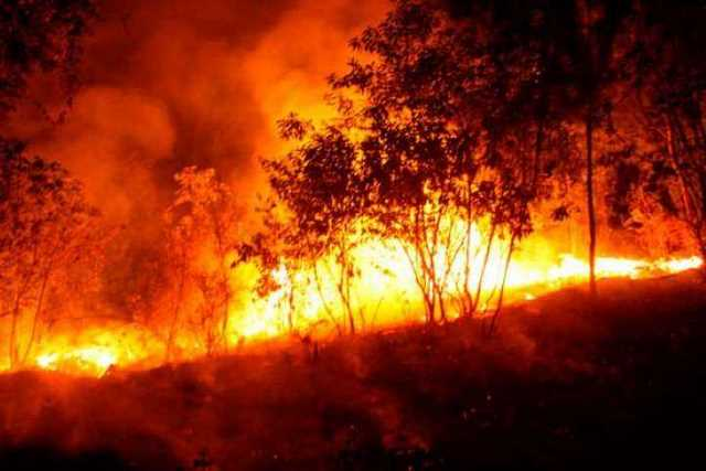 incendio-cerro-de-la-Cruz-Uruapan-2
