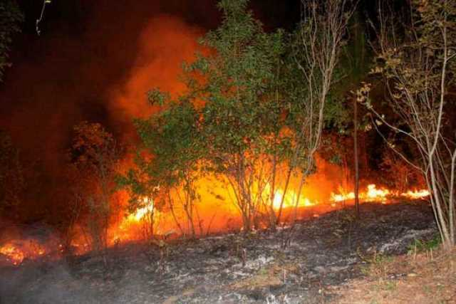 incendio-cerro-de-la-Cruz-Uruapan-3