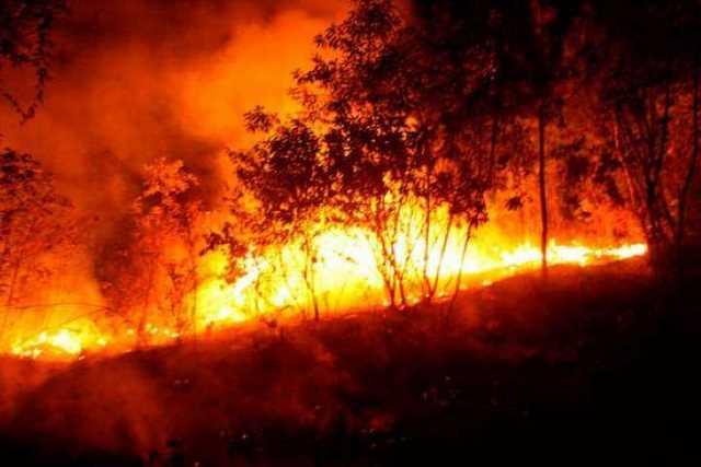 incendio-cerro-de-la-Cruz-Uruapan
