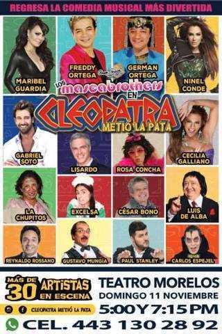 Cleopatra metio la pata Morelia
